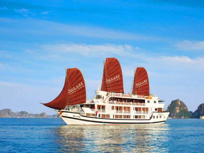 Stellar Cruise - 2 Days 1 Night - Halong Bay Tours